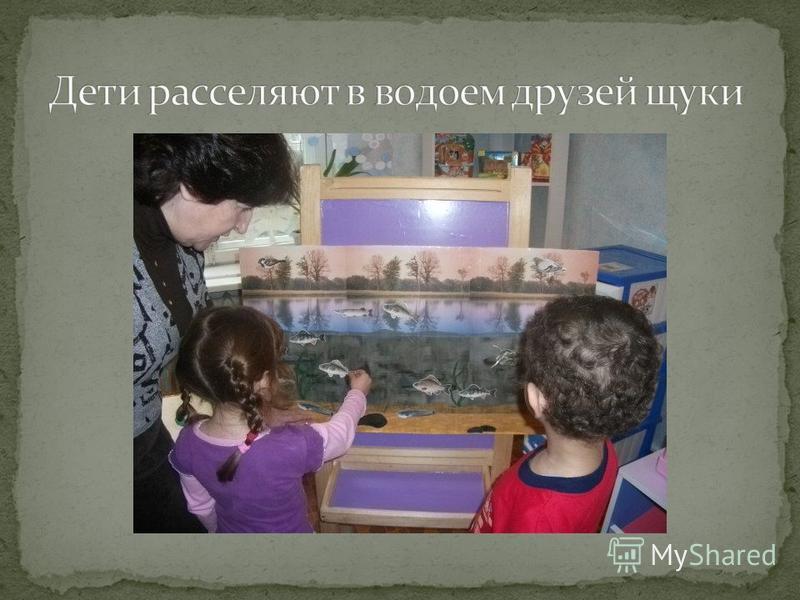 Проведение тематического занятия «Кто в реке Северский Донец живет». Занятие по изобразительной деятельности «Волшебная рыбка». Проведение выставки «Животный мир водоемов», создание «Водного царства» в уголке природы. Эксперимент «Почему рыбы не тону