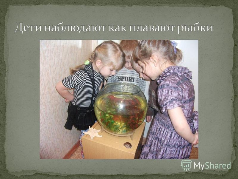 Наблюдение за рыбками в аквариуме. Рассматривание иллюстраций с изображением речных рыб. Загадывание загадок. Чтение сказки «По щучьему веленью». Подвижная игра «Щука и Ерши». Беседа с детьми о рыбах, живущих в наших реках; о том, надо ли заботиться