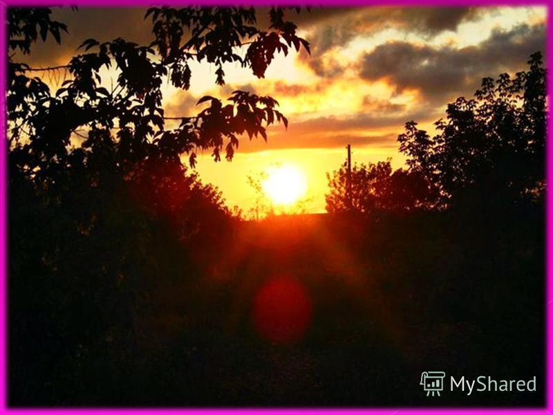 Утренним солнцем давно Чуткий мой сон озарён. Дрогнули вежды. В окно Розовый стукнул пион. В яркий одевшись покров, Пышный и дерзкий он взрос. Льётся с его лепестков. Запах лимона и роз. Утренним солнцем давно Чуткий мой сон озарён. Дрогнули вежды. В