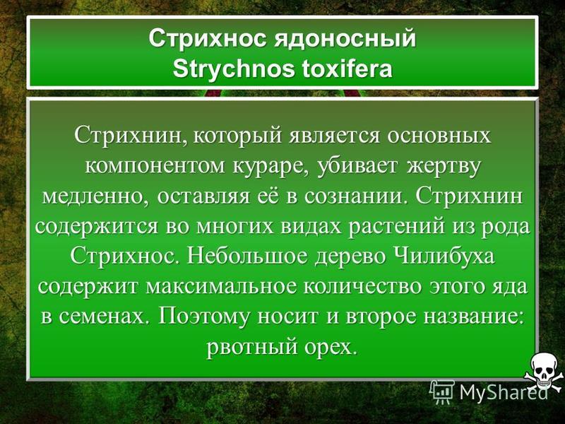 Стрихнос ядоносный Strychnos toxifera Стрихнин, который является основных компонентом кураре, убивает жертву медленно, оставляя её в сознании. Стрихнин содержится во многих видах растений из рода Стрихнос. Небольшое дерево Чилибуха содержит максималь