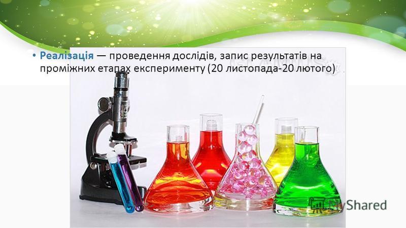 Реалізація проведення дослідів, запис результатів на проміжних етапах експерименту (20 листопада-20 лютого)