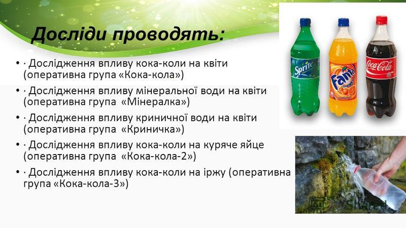 Досліди проводять: · Дослідження впливу кока-коли на квіти (оперативна група «Кока-кола») · Дослідження впливу мінеральної води на квіти (оперативна група «Мінералка») · Дослідження впливу криничної води на квіти (оперативна група «Криничка») · Дослі