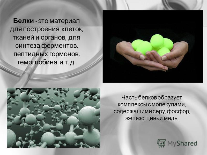 Белки - это материал для построения клеток, тканей и органов, для синтеза ферментов, пептидных гормонов, гемоглобина и т. д. Часть белков образует комплексы с молекулами, содержащими серу, фосфор, железо, цинк и медь.