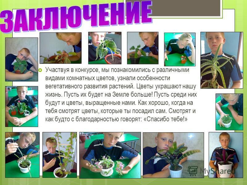 Участвуя в конкурсе, мы познакомились с различными видами комнатных цветов, узнали особенности вегетативного развития растений. Цветы украшают нашу жизнь. Пусть их будет на Земле больше! Пусть среди них будут и цветы, выращенные нами. Как хорошо, ког