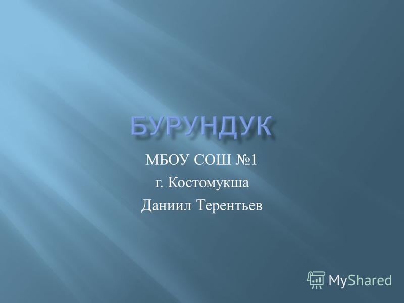 МБОУ СОШ 1 г. Костомукша Даниил Терентьев