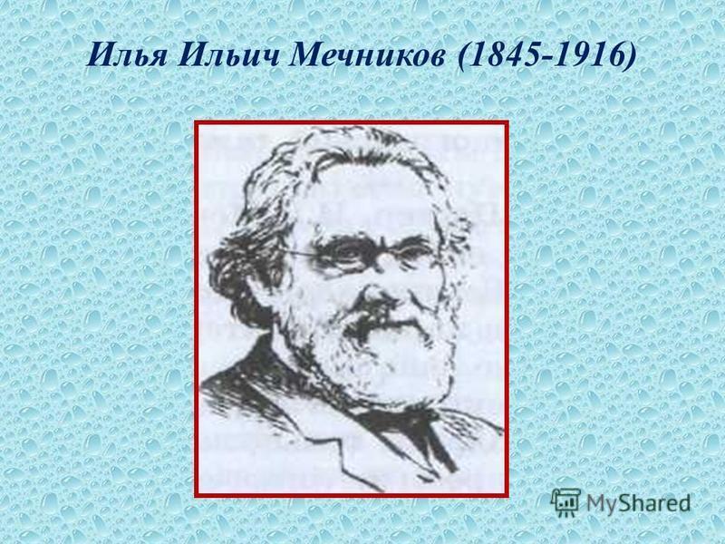 Илья Ильич Мечников (1845-1916)