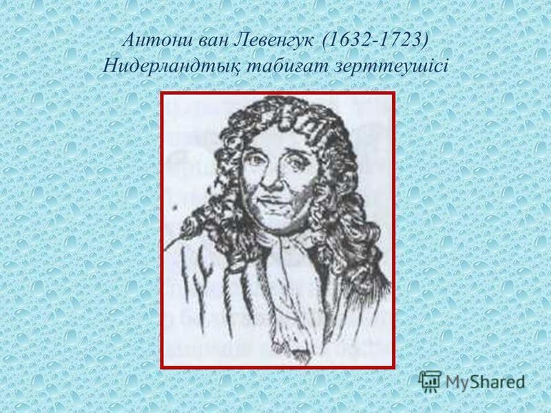 Антони ван Левенгук (1632-1723) Нидерландтық табиғат зерттеушісі
