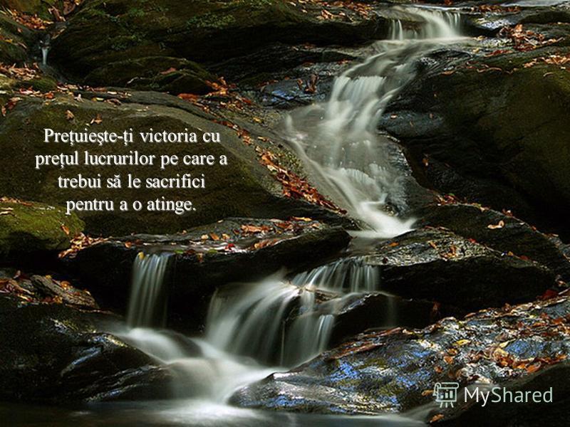 Preţuieşte-ţi victoria cu preţul lucrurilor pe care a trebui să le sacrifici pentru a o atinge.