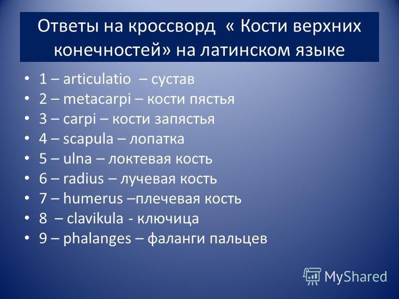 Ответы на кроссворд « Кости верхних конечностей» на латинском языке 1 – articulatio – сустав 2 – metacarpi – кости пястья 3 – carpi – кости запястья 4 – scapula – лопатка 5 – ulna – локтевая кость 6 – radius – лучевая кость 7 – humerus –плечевая ко
