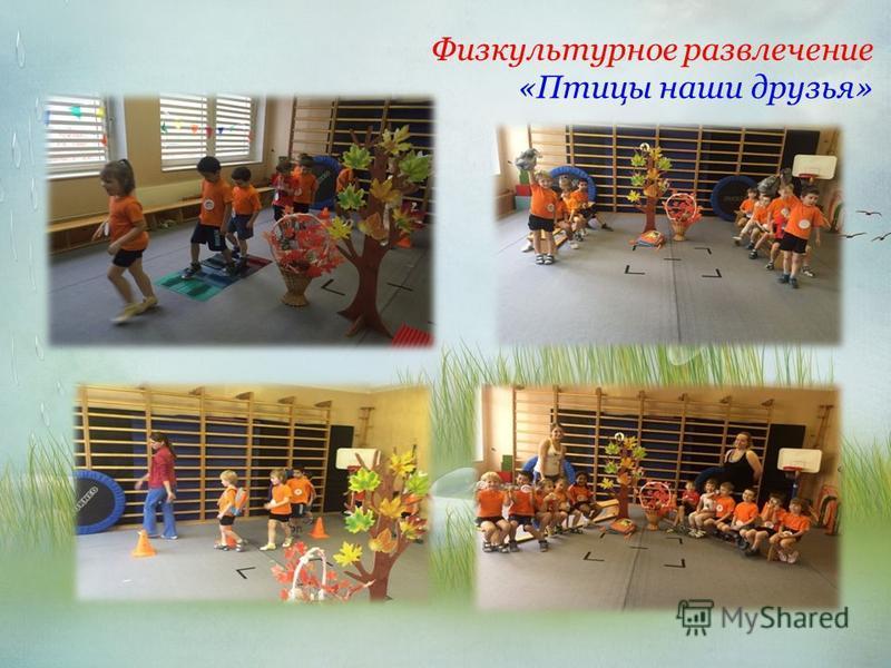 Физкультурное развлечение «Птицы наши друзья»
