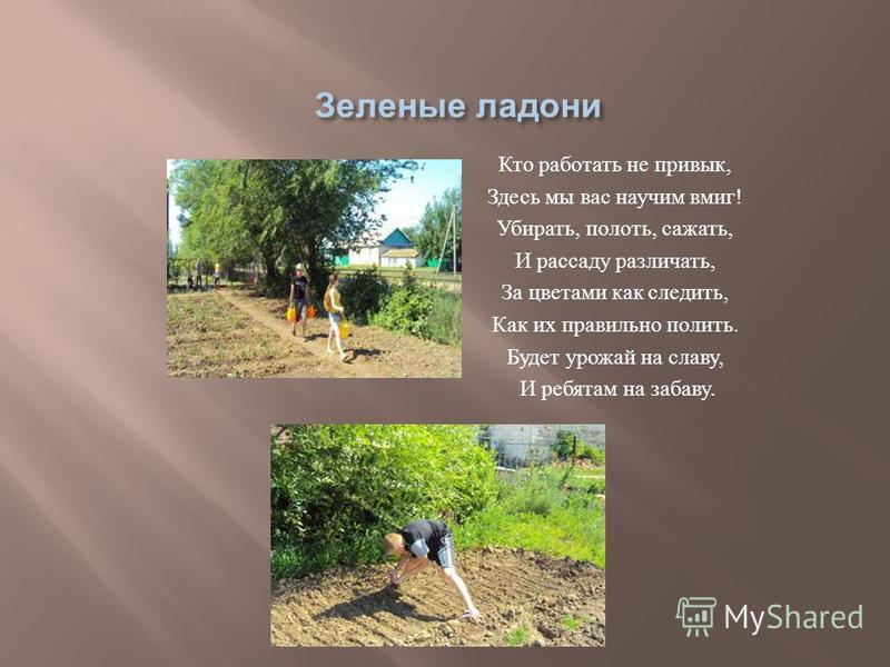 Кто работать не привык, Здесь мы вас научим вмиг ! Убирать, полоть, сажать, И рассаду различать, За цветами как следить, Как их правильно полить. Будет урожай на славу, И ребятам на забаву.