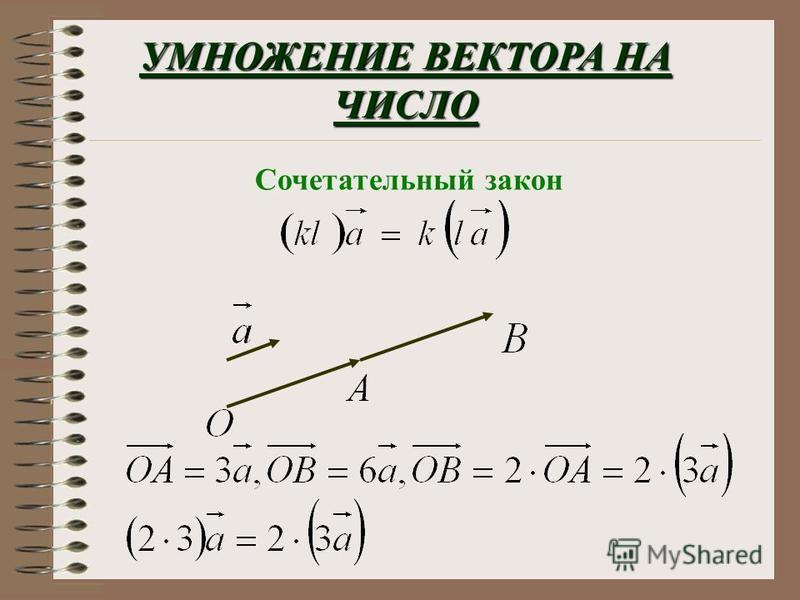 вектор Произведением ненулевого вектора а на число к называется вектор в : 1) длина которого ра вна длине вектора а, умноженной на | к | сонапра влены 2) если к 0, то векторы а и в сонапра влены противоположно напра влены если к < 0, то векторы а и в