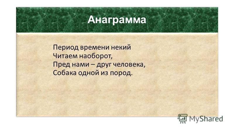 Анаграмма Период времени некий Читаем наоборот, Пред нами – друг человека, Собака одной из пород.