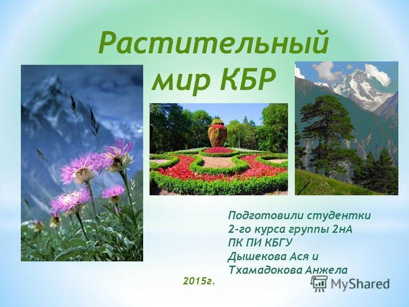 Подготовили студентки 2-го курса группы 2 нА ПК ПИ КБГУ Дышекова Ася и Тхамадокова Анжела 2015 г. Растительный мир КБР