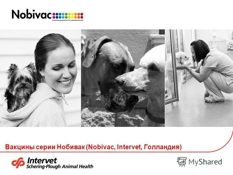 Вакцины серии Нобивак (Nobivac, Intervet, Голландия)