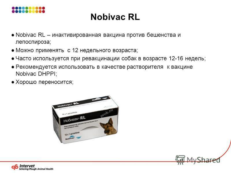 Nobivac RL Nobivac RL – инактивированная вакцина против бешенства и лептоспироза; Можно применять с 12 недельного возраста; Часто используется при ревакцинации собак в возрасте 12-16 недель; Рекомендуется использовать в качестве растворителя к вакцин