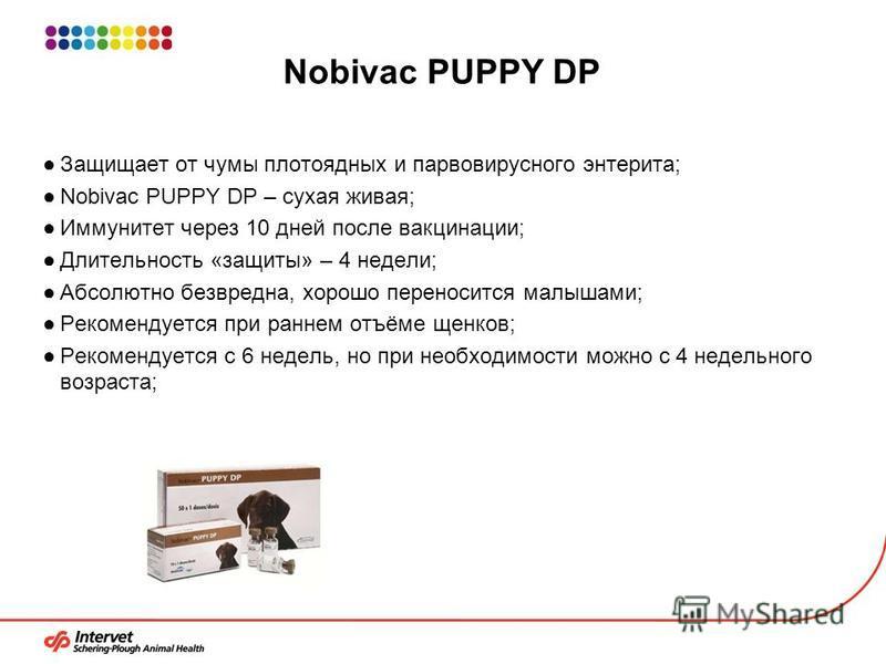 Nobivac PUPPY DP Защищает от чумы плотоядных и парвовирусного энтерита; Nobivac PUPPY DP – сухая живая; Иммунитет через 10 дней после вакцинации; Длительность «защиты» – 4 недели; Абсолютно безвредна, хорошо переносится малышами; Рекомендуется при ра