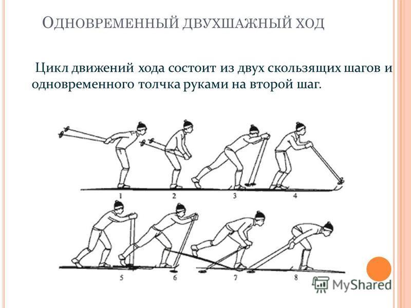 О ДНОВРЕМЕННЫЙ ДВУХШАЖНЫЙ ХОД Цикл движений хода состоит из двух скользящих шагов и одновременного толчка руками на второй шаг.