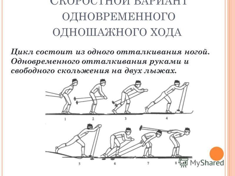 С КОРОСТНОЙ ВАРИАНТ ОДНОВРЕМЕННОГО ОДНОШАЖНОГО ХОДА Цикл состоит из одного отталкивания ногой. Одновременного отталкивания руками и свободного скольжения на двух лыжах.