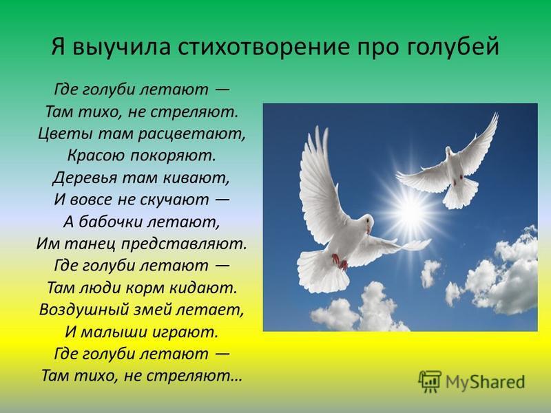 Я выучила стихотворение про голубей Где голуби летают Там тихо, не стреляют. Цветы там расцветают, Красою покоряют. Деревья там кивают, И вовсе не скучают А бабочки летают, Им танец представляют. Где голуби летают Там люди корм кидают. Воздушный змей