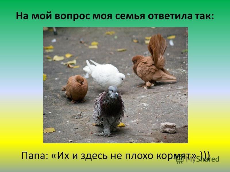 На мой вопрос моя семья ответила так: Папа: «Их и здесь не плохо кормят» )))