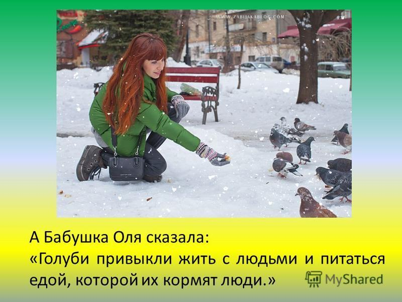 А Бабушка Оля сказала: «Голуби привыкли жить с людьми и питаться едой, которой их кормят люди.»