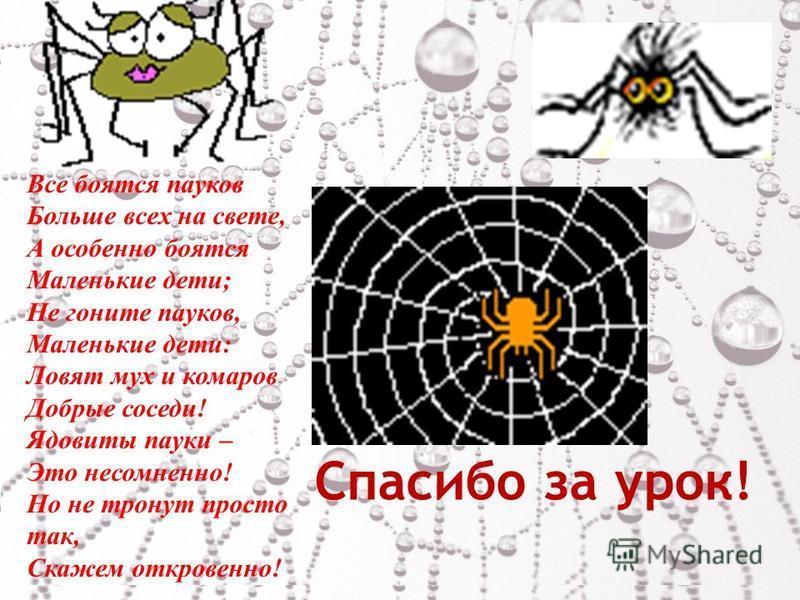 Спасибо за урок! Все боятся пауков Больше всех на свете, А особенно боятся Маленькие дети; Не гоните пауков, Маленькие дети: Ловят мух и комаров Добрые соседи! Ядовиты пауки – Это несомненно! Но не тронут просто так, Скажем откровенно!.