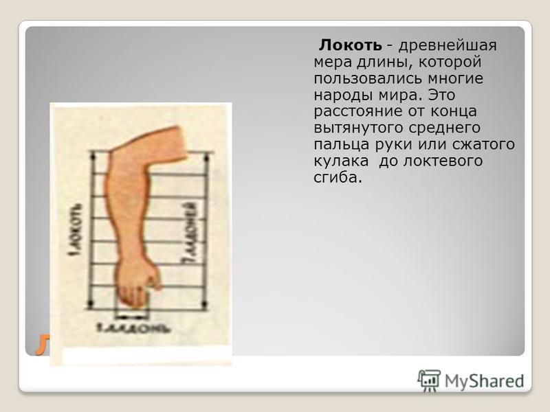 Дюйм - (от голландского - большой палец).Он равен ширине большого пальца или длине трех сухих зерен ячменя, взятых из средней части колоса.
