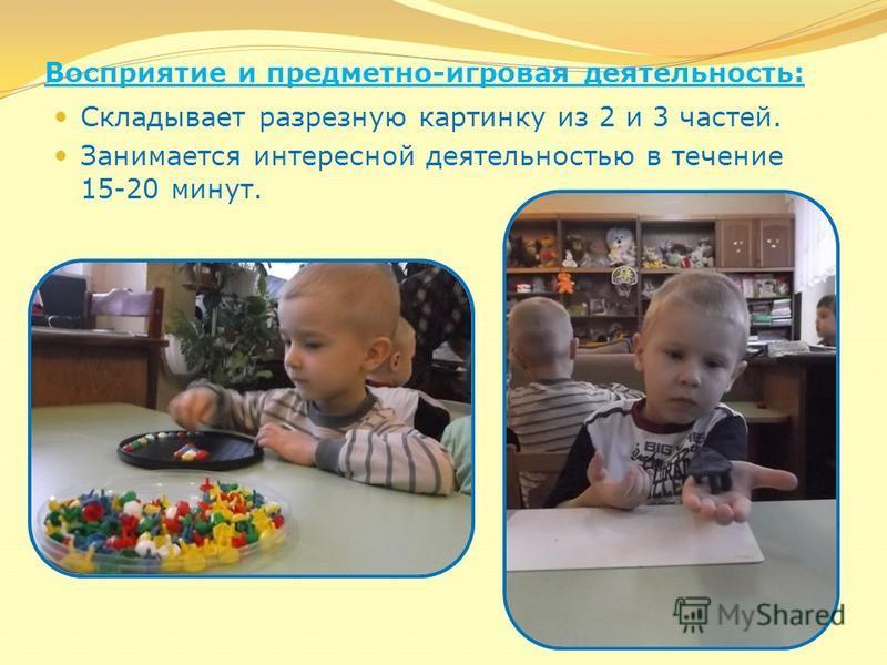 Восприятие и предметно-игровая деятельность: Складывает разрезную картинку из 2 и 3 частей. Занимается интересной деятельностью в течение 15-20 минут.