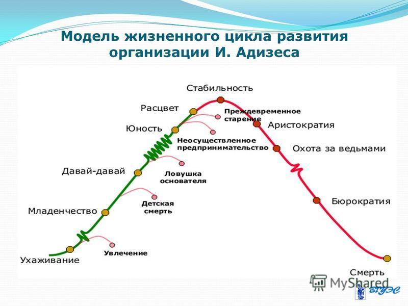 Модель жизненного цикла развития организации И. Адизеса