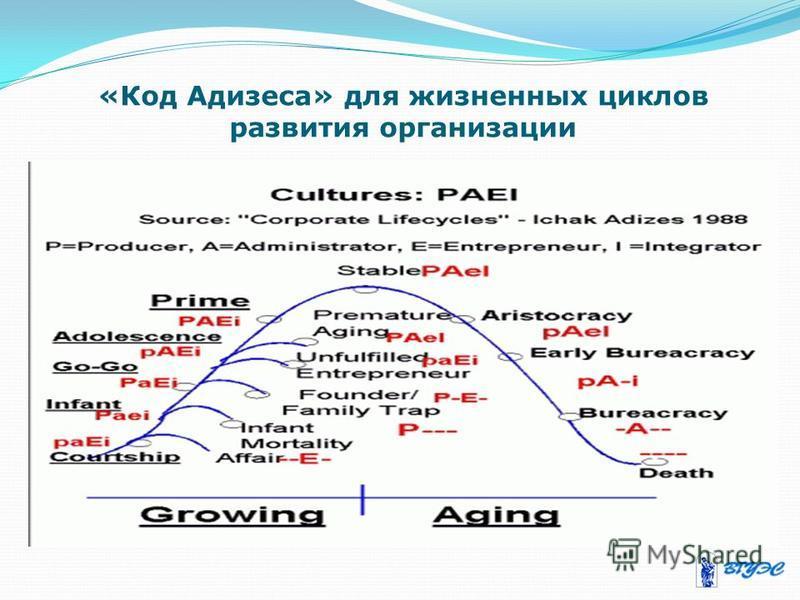«Код Адизеса» для жизненных циклов развития организации