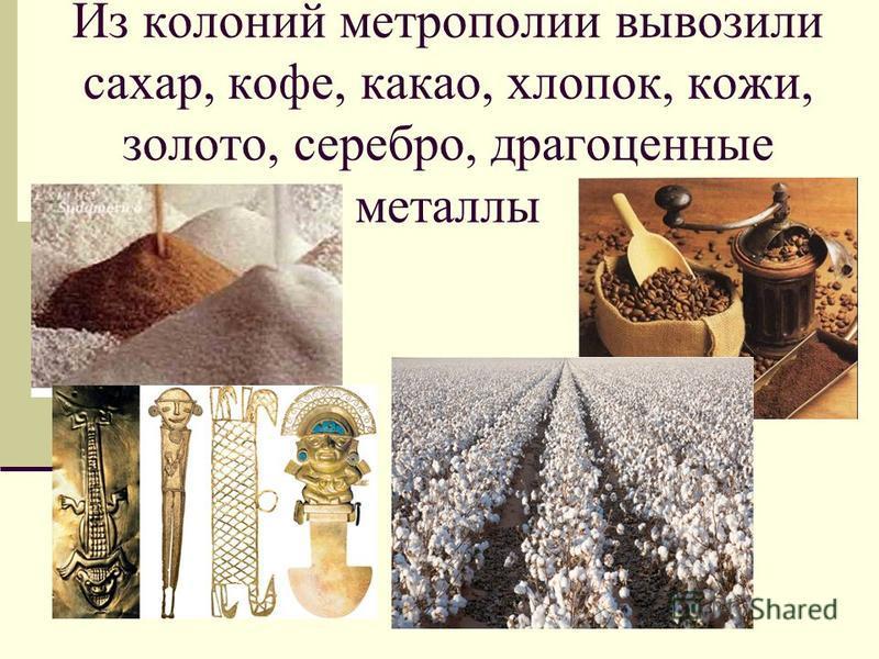 Из колоний метрополии вывозили сахар, кофе, какао, хлопок, кожи, золото, серебро, драгоценные металлы