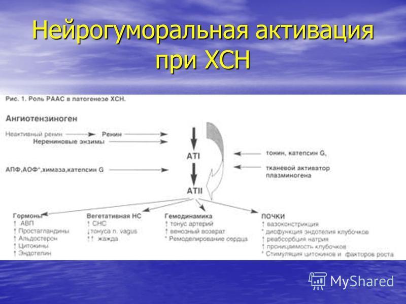 Нейрогуморальная активация при ХСН