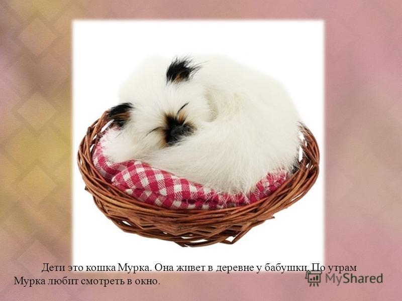 Дети это кошка Мурка. Она живет в деревне у бабушки. По утрам Мурка любит смотреть в окно.