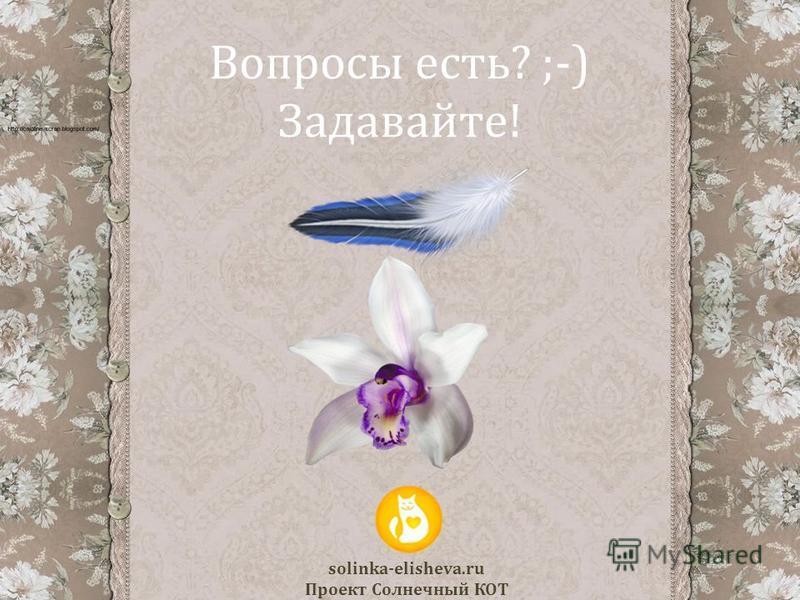 Вопросы есть? ;-) Задавайте! 17 solinka-elisheva.ru Проект Солнечный КОТ