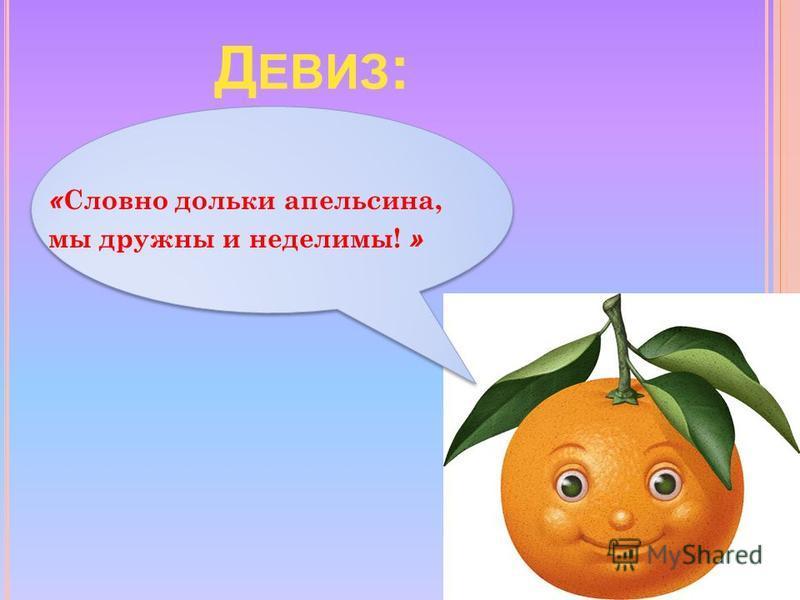 Д ЕВИЗ : « Словно дольки апельсина, мы дружны и неделимы! »