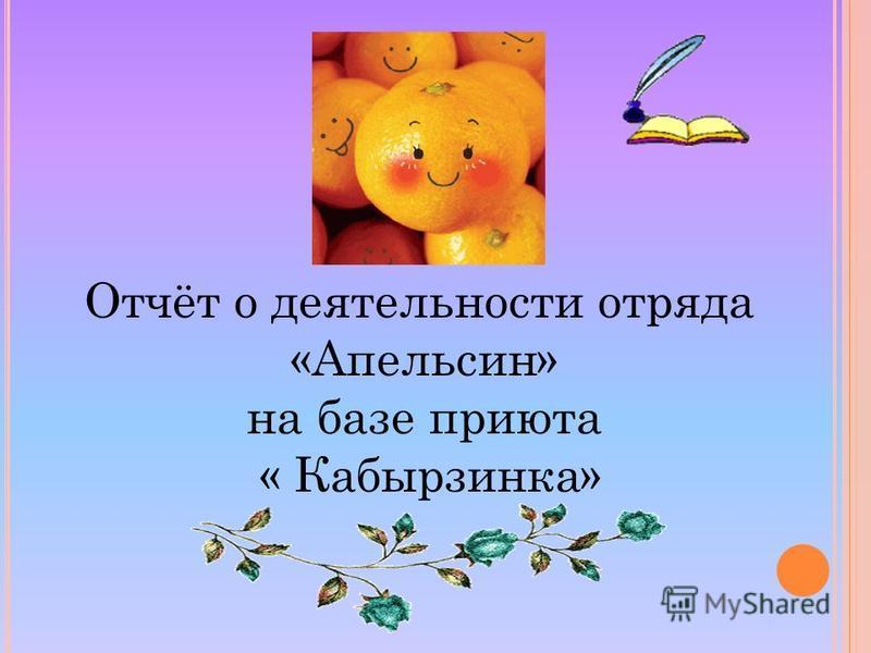 Отчёт о деятельности отряда «Апельсин» на базе приюта « Кабырзинка»