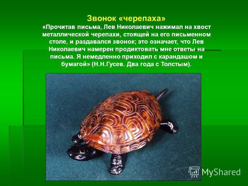 Звонок «черепаха» «Прочитав письма, Лев Николаевич нажимал на хвост металлической черепахи, стоящей на его письменном столе, и раздавался звонок; это означает, что Лев Николаевич намерен продиктовать мне ответы на письма. Я немедленно приходил с кара