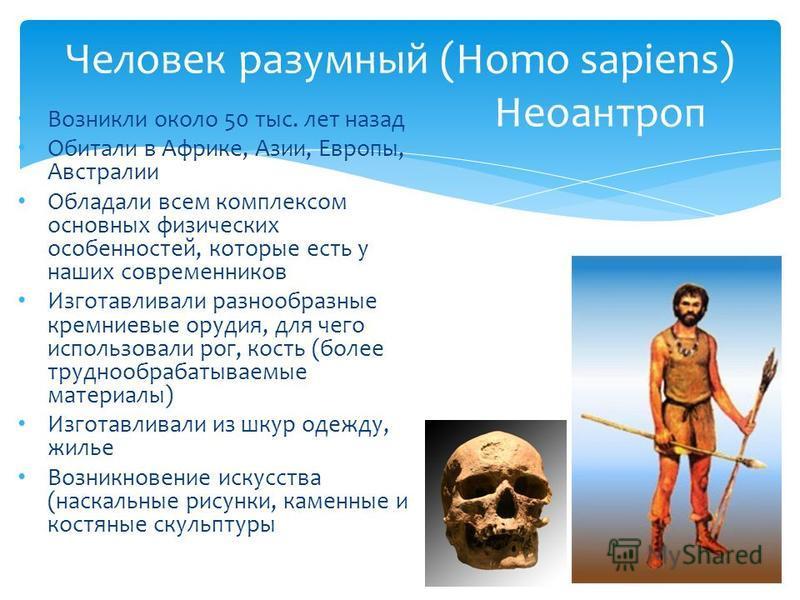 Человек разумный (Homo sapiens) Неоантроп Возникли около 50 тыс. лет назад Обитали в Африке, Азии, Европы, Австралии Обладали всем комплексом основных физических особенностей, которые есть у наших современников Изготавливали разнообразные кремниевые