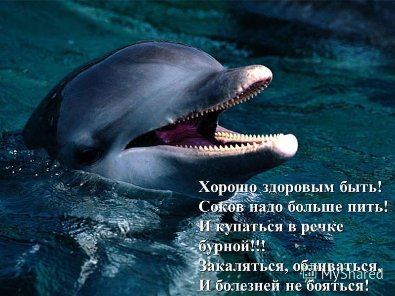 Хорошо здоровым быть! Соков надо больше пить! И купаться в речке бурной!!! Закаляться, обливаться, И болезней не бояться!