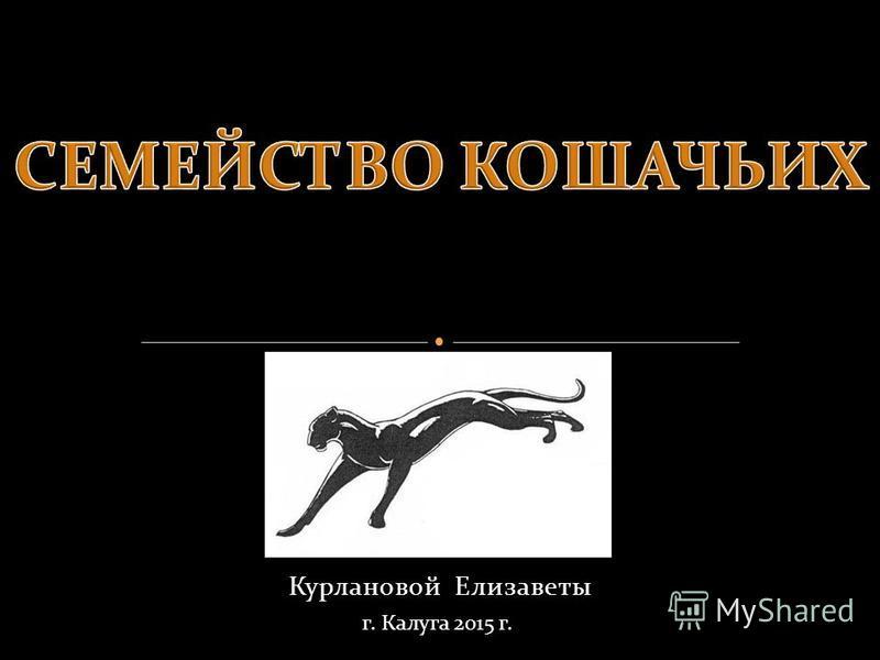 Курлановой Елизаветы г. Калуга 2015 г.
