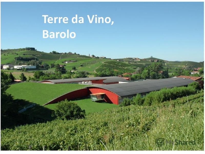 Terre da Vino, Barolo