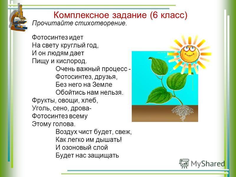 Комплексное задание (6 класс) Прочитайте стихотворение. Фотосинтез идет На свету круглый год, И он людям дает Пищу и кислород. Очень важный процесс - Фотосинтез, друзья, Без него на Земле Обойтись нам нельзя. Фрукты, овощи, хлеб, Уголь, сено, дрова-
