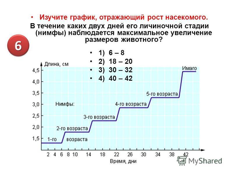 Изучите график, отражающий рост насекомого. В течение каких двух дней его личиночной стадии (нимфы) наблюдается максимальное увеличение размеров животного? 1) 6 – 8 2) 18 – 20 3) 30 – 32 4) 40 – 42 66