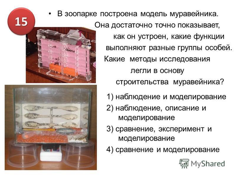 В зоопарке построена модель муравейника. Она достаточно точно показывает, как он устроен, какие функции выполняют разные группы особей. Какие методы исследования легли в основу строительства муравейника? 1) наблюдение и моделирование 2) наблюдение, о