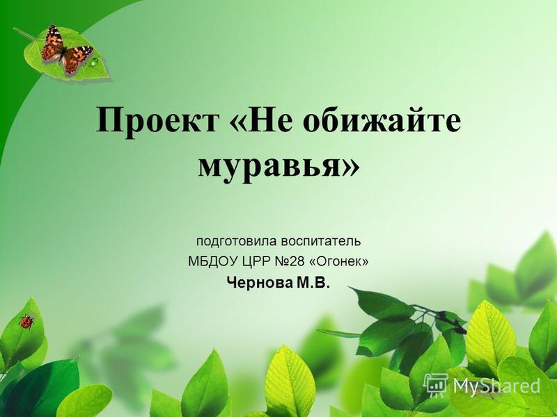 Проект «Не обижайте муравья» подготовила воспитатель МБДОУ ЦРР 28 «Огонек» Чернова М.В.
