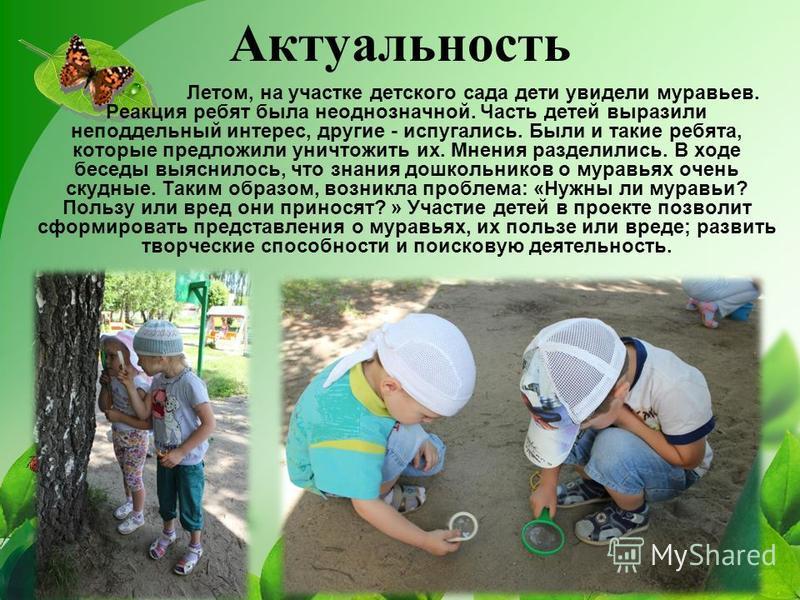 Актуальность Летом, на участке детского сада дети увидели муравьев. Реакция ребят была неоднозначной. Часть детей выразили неподдельный интерес, другие - испугались. Были и такие ребята, которые предложили уничтожить их. Мнения разделились. В ходе бе