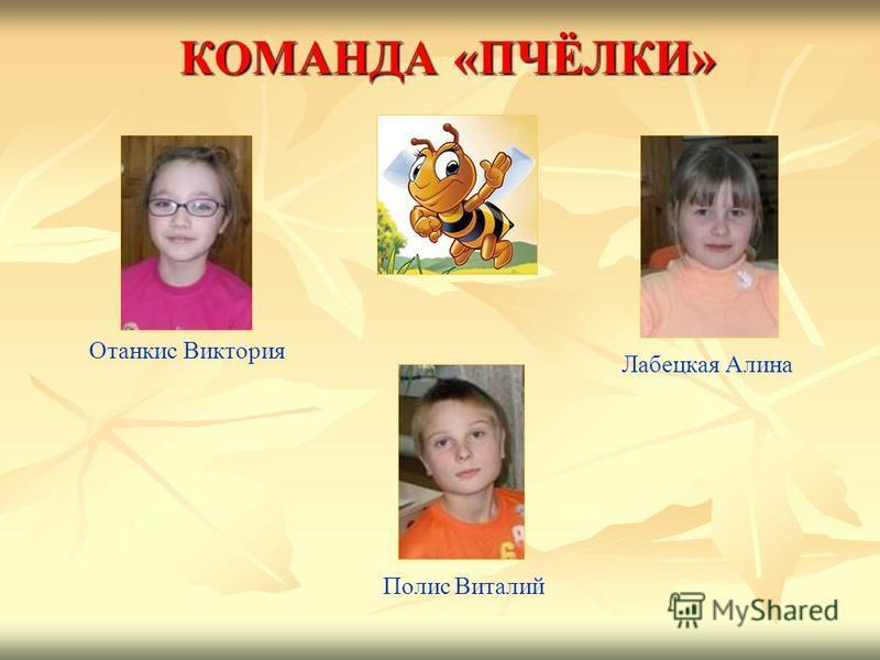 КОМАНДА «ПЧЁЛКИ» Отанкис Виктория Лабецкая Алина Полис Виталий