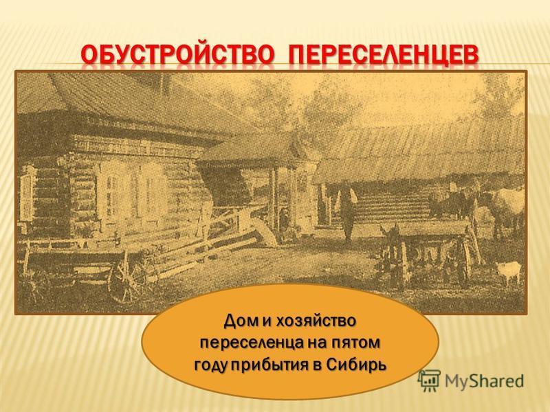 Дом и хозяйство переселенца на пятом году прибытия в Сибирь