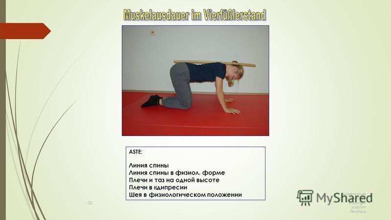 Rückenschule des VPT / copyright joachim fleichaus - 23 ASTE: Линия спины Линия спины в физиол. форме Плечи и таз на одной высоте Плечи в «депрессии Шея в физиологическом положении